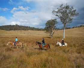 Chapman Valley Horse Riding - Accommodation Airlie Beach