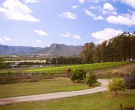 Catherine Vale Wines - Accommodation Airlie Beach