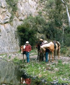 Yarramba Horse Riding - Accommodation Airlie Beach