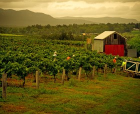 Around Hermitage Wine and Food Trail Hunter Valley - Accommodation Airlie Beach