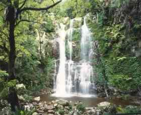 Budderoo National Park - The Falls Walk - Accommodation Airlie Beach