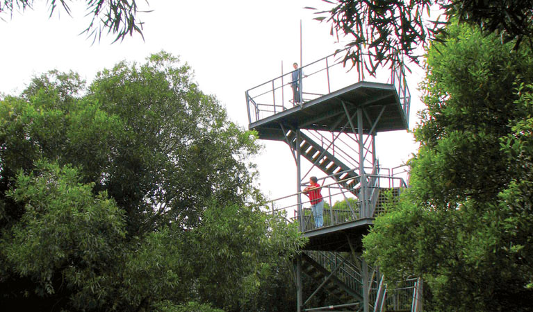 Cape Hawke lookout - Accommodation Airlie Beach