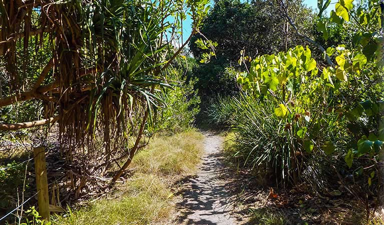 North Head walking track - Accommodation Airlie Beach