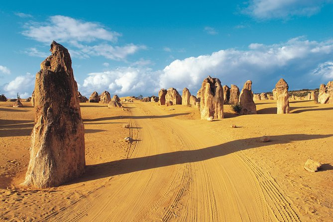 Pinnacles Desert Koalas and Sandboarding 4WD Day Tour from Perth - Accommodation Airlie Beach