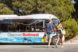 Rottnest Island Tour from Perth or Fremantle including Bus Tour - Accommodation Airlie Beach