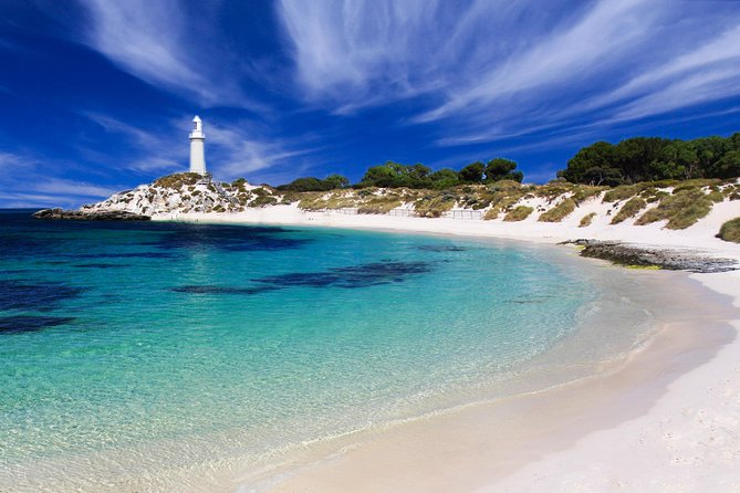 Rottnest Island Grand Tour Including Lunch and Historical Train Ride - Accommodation Airlie Beach
