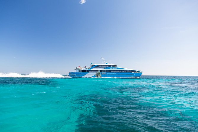 Fremantle to Rottnest Island Roundtrip Ferry Ticket - Accommodation Airlie Beach