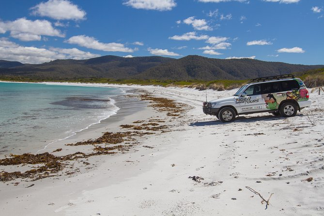 4X4 and Lunch Half Day Bicheno Coastal Mountain - Accommodation Airlie Beach