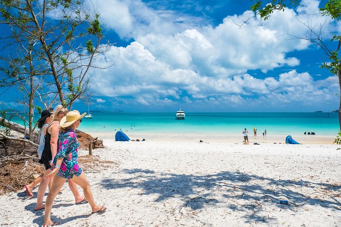 Whitehaven Beach Half-Day Cruises - Accommodation Airlie Beach