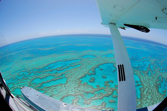 Best of the Whitsundays Seaplane Tour Including Whitehaven Beach Landing - Accommodation Airlie Beach