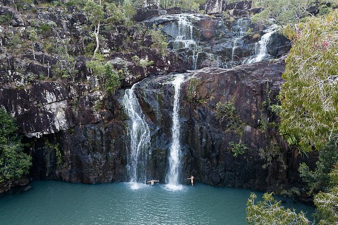Tropical Rainforest & Waterfalls | Guided Walk | from Airlie Beach, Whitsundays