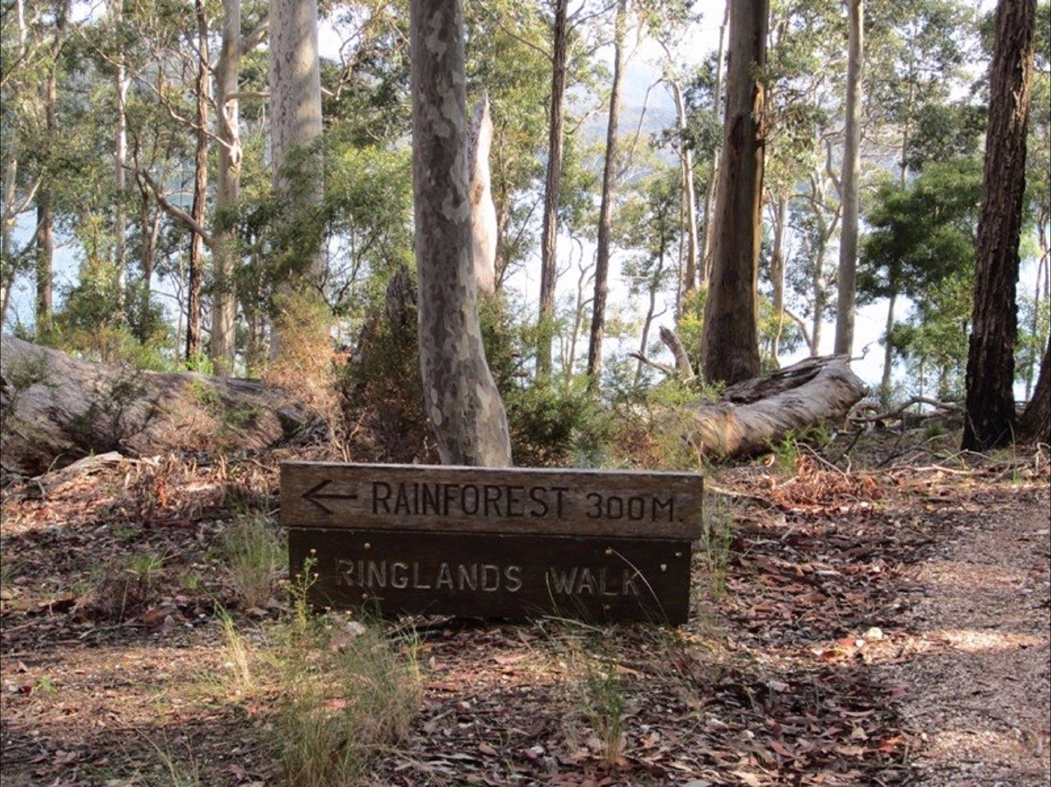 Ringlands Rotary Walk Narooma - Accommodation Airlie Beach