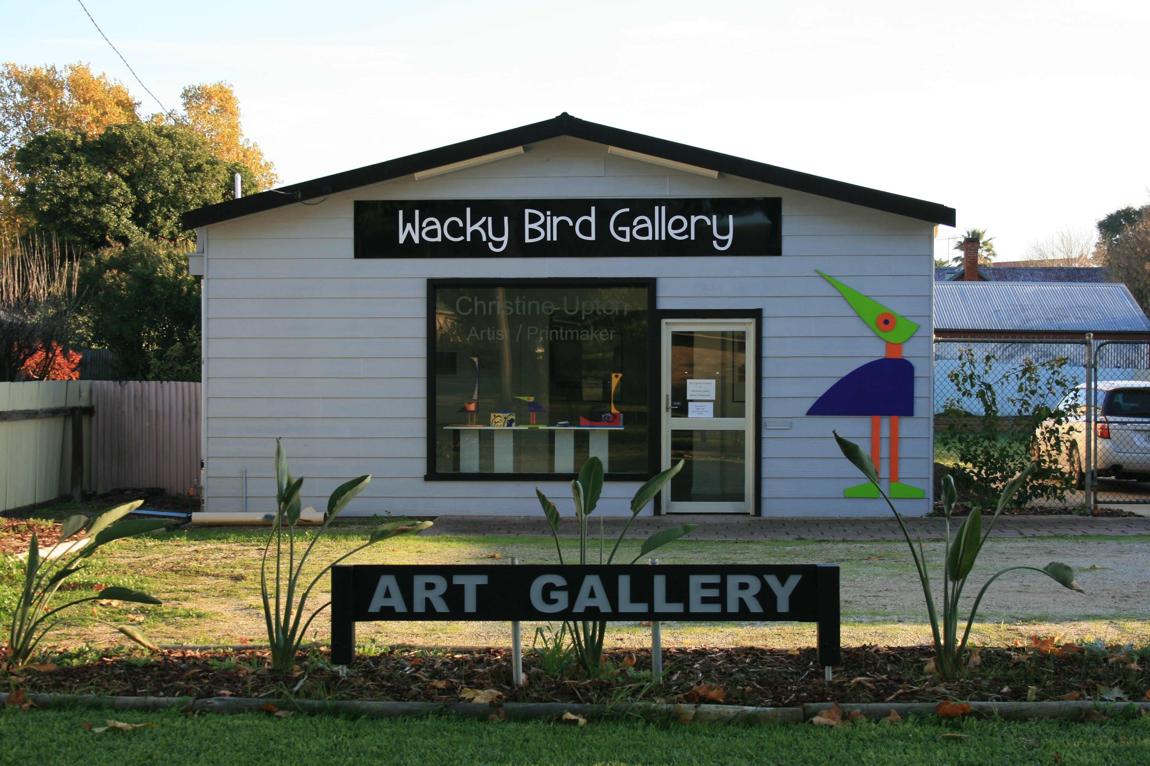 Wacky Bird Gallery - Accommodation Airlie Beach