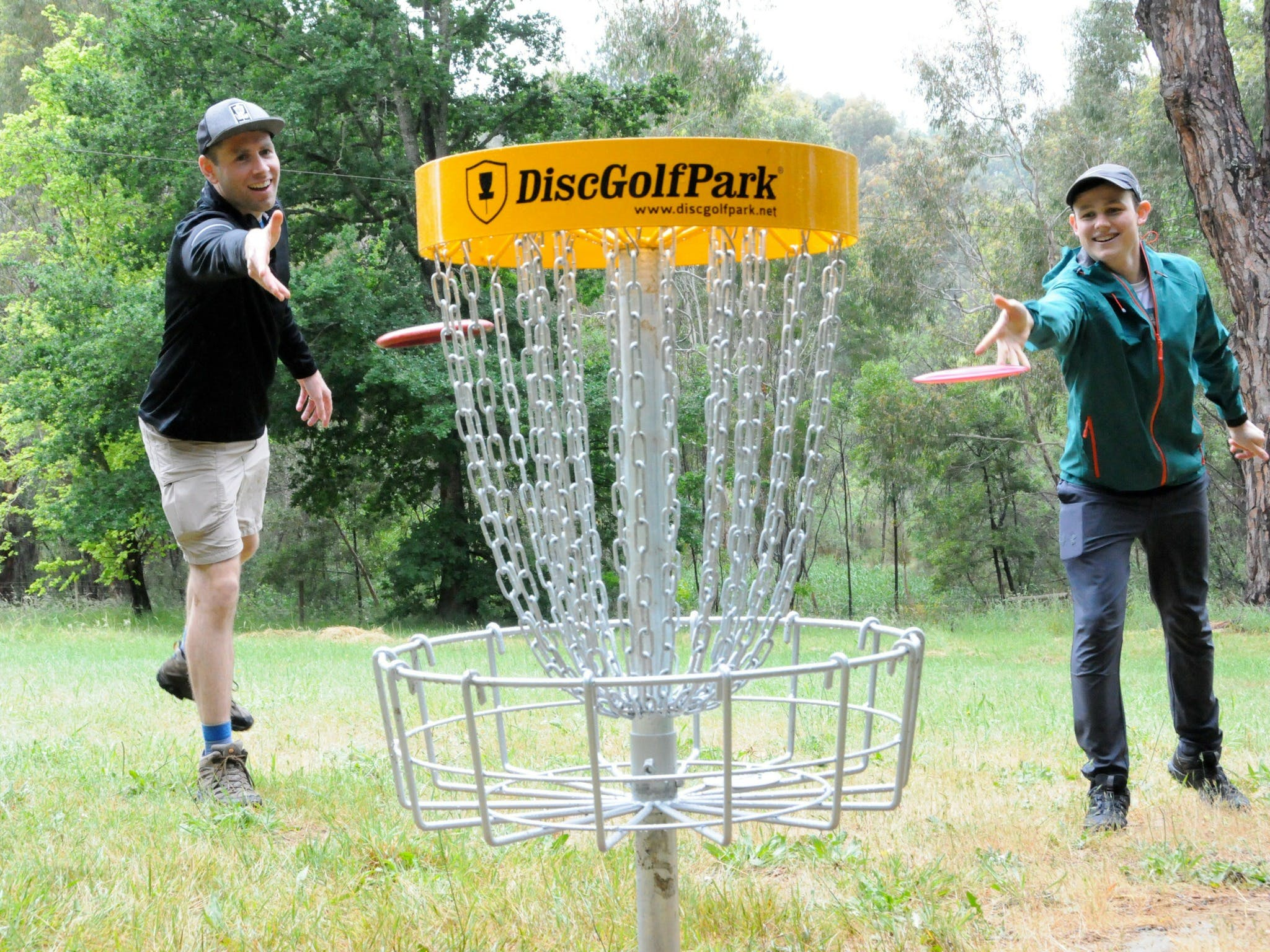 Disc Golf - Accommodation Airlie Beach