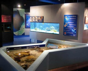 Marine and Freshwater Discovery Centre - Accommodation Airlie Beach