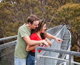 Valley of the Giants Tree Top Walk - Accommodation Airlie Beach