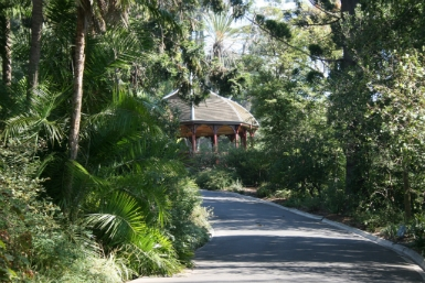 Royal Botanic Gardens Victoria - Accommodation Airlie Beach