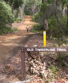 Old Timberline and Sidings Rail Trails - Accommodation Airlie Beach