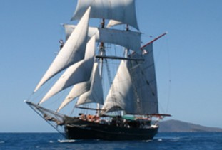 Australian Tallship Cruises - Accommodation Airlie Beach