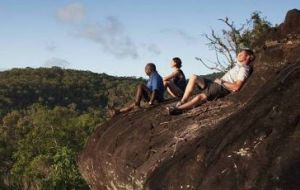 Cooktown Aboriginal Art Tours - Accommodation Airlie Beach