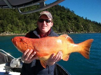 Gone Fishing by Coral Sea Fishing Charters Airlie Beach - Accommodation Airlie Beach