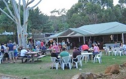 Bush Shack Brewery - Accommodation Airlie Beach