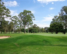 Singleton Golf Club - Accommodation Airlie Beach