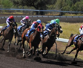Alice Springs Turf Club - Accommodation Airlie Beach