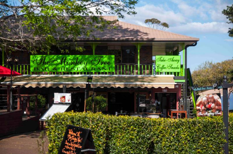 The Monkey Tree Bar & Restaurant - Accommodation Airlie Beach
