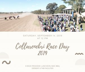 Collarenebri Races - Accommodation Airlie Beach