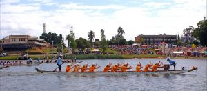 Jacaranda Dragon Boat Races - Accommodation Airlie Beach