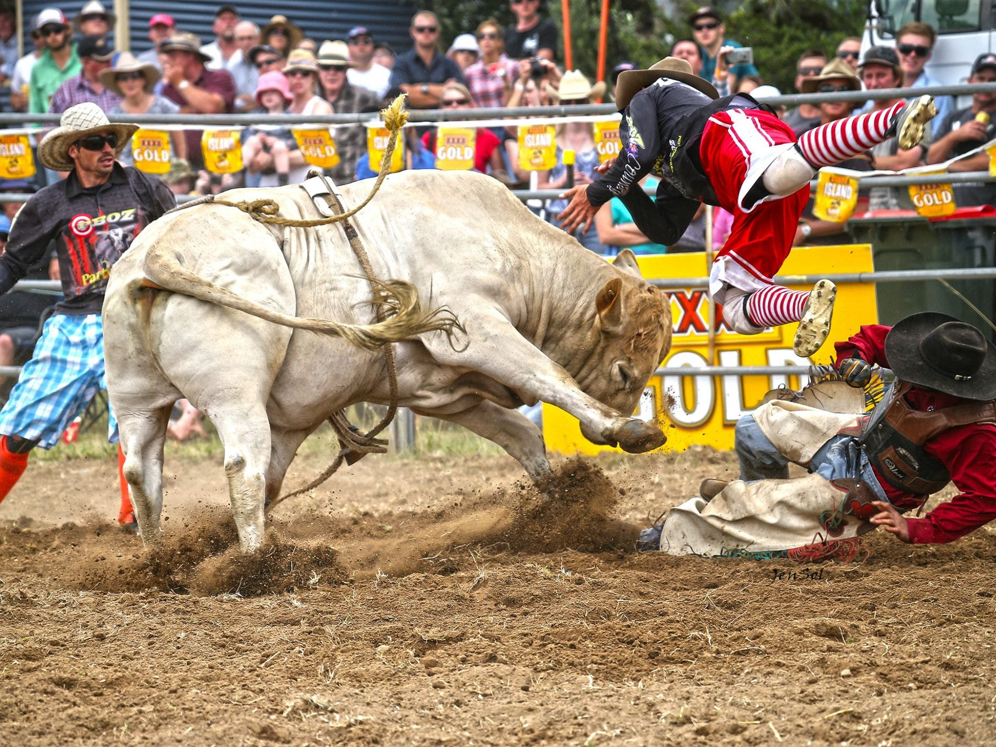 Jindabyne's Man From Snowy River Rodeo - Accommodation Airlie Beach