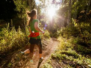 Run Dungog - Accommodation Airlie Beach