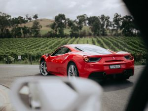The Prancing Horse Supercar Drive Day Experience - Melbourne Yarra Valley - Accommodation Airlie Beach