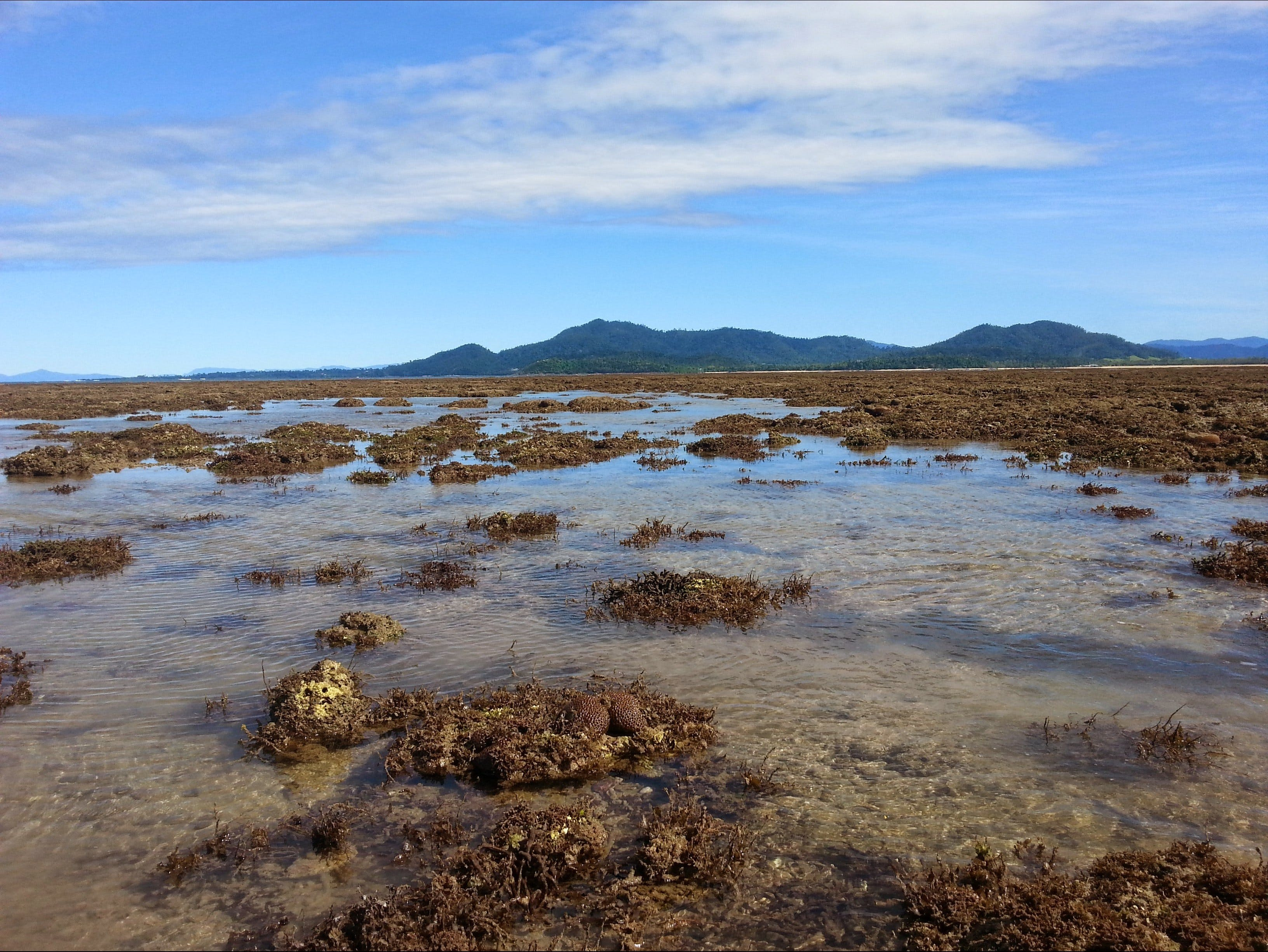 Walk to the Reef - Accommodation Airlie Beach
