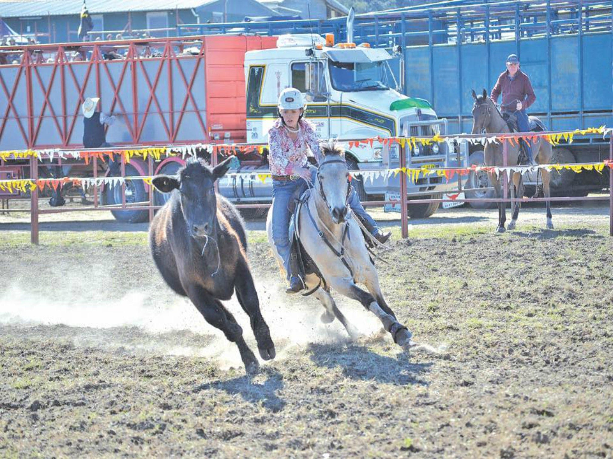 Gresford  Campdraft and Rodeo - Accommodation Airlie Beach