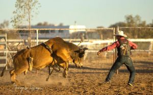 Walgett Charity Bushman's Carnival Rodeo and Campdraft - Accommodation Airlie Beach