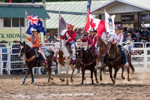 Warwick Rodeo National APRA National Finals and Warwick Gold Cup Campdraft - Accommodation Airlie Beach