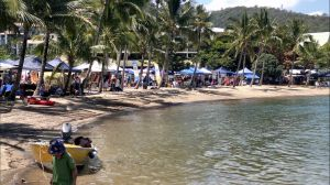 Lions Airlie Beach Community Markets - Accommodation Airlie Beach