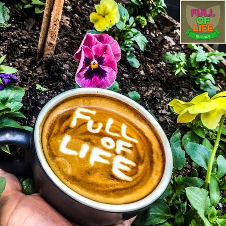 Full of Life Organics - Accommodation Airlie Beach